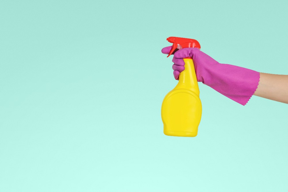 Blog Thumbnail of Essential Spring Cleaning Tips for Renters