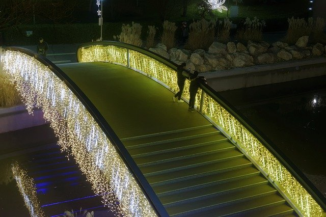 Blog Thumbnail of Walk Through a Lighted Path at the Meadowlark Botanical Gardens